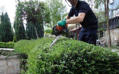 Поддръжка на градина,парк,двор,зелена площ