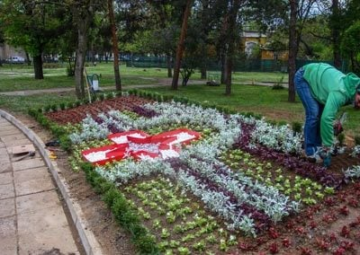 Озеленяване в Александровска Болница