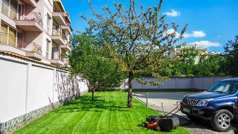 Вертикутиране на тревния килим,райграс, тревни площи, трева цена
