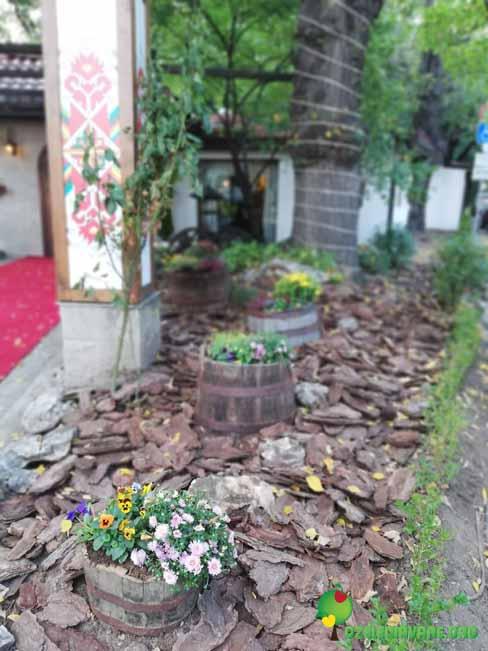 Градина Кошарите 6