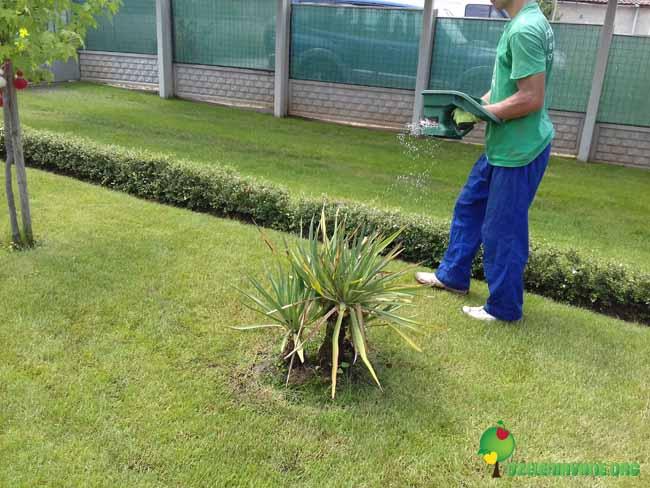 Поддържане на озеленяване